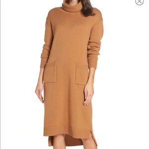 Caara Turtleneck Sweater Dress
